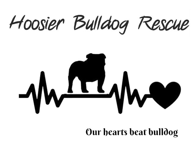 Types of Bulldogs - Hoosier Bulldog Rescue